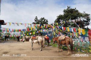 Bhutan2013 31