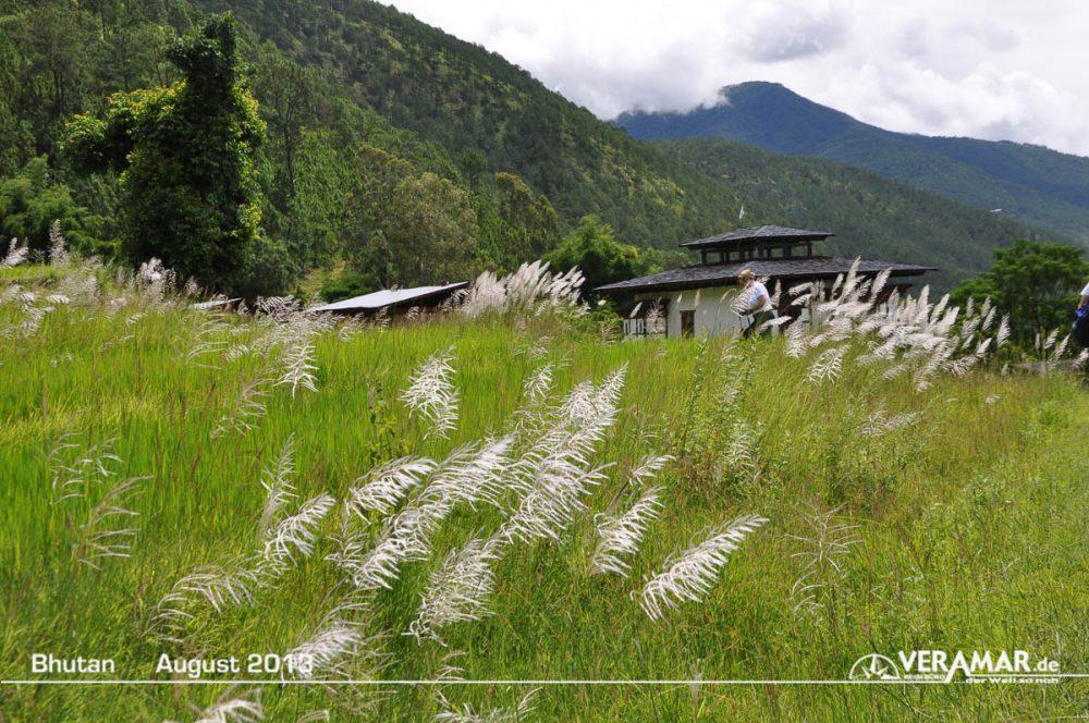 Bhutan Fedler