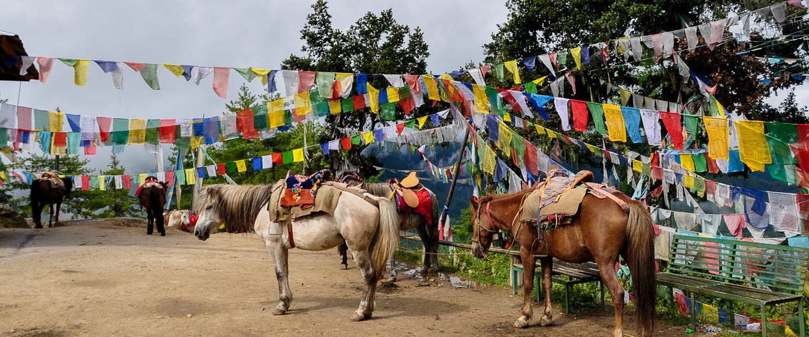 Bhutan Veramar